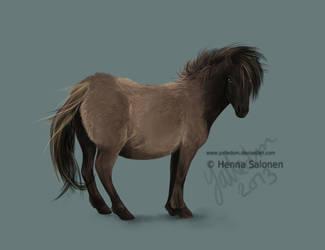Pony by Bombuska