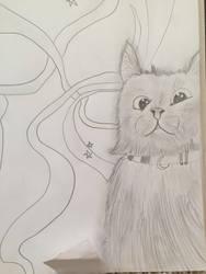 Derp cat by whiteseal13