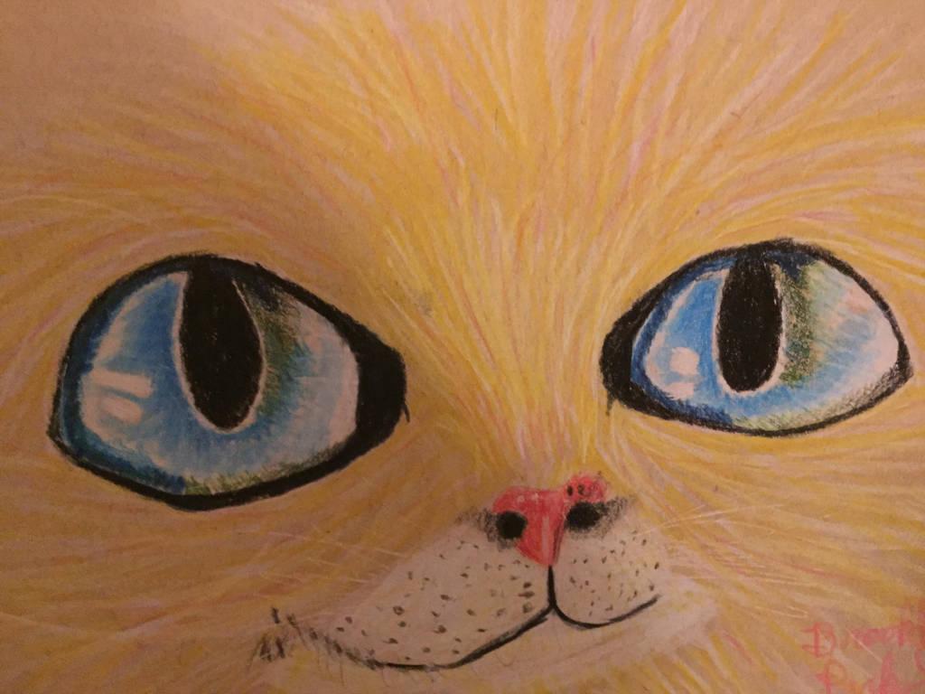 Cat face by whiteseal13