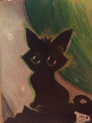 Black cat by whiteseal13