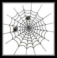 Cobweb by cerenimo