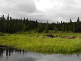 Alaska Lake 3 by prints-of-stock