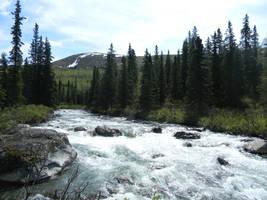 Alaska River 24 by prints-of-stock