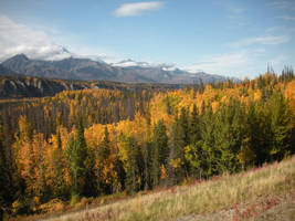 Fall Landscape 1 by prints-of-stock