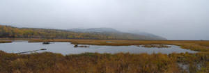 Marsh Panorama 2 by prints-of-stock