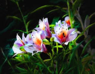Morning Flowers by TomCarlos