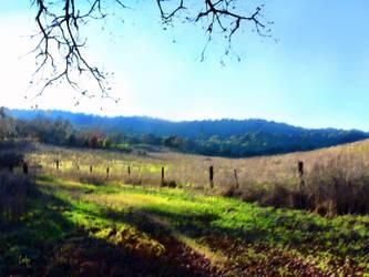Grant Ranch Trail by TomCarlos