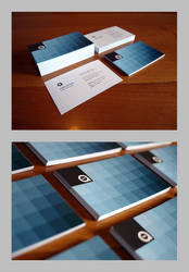 business card 2010 by freewally