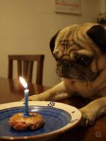 birthday by freewally