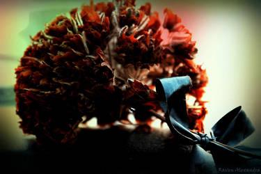 Satin Flower by RavenA938