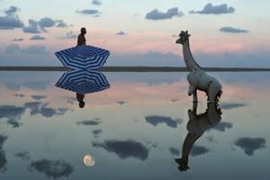 Zebra Giraffe by ahermin