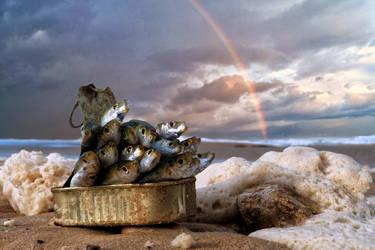 Over the Rainbow by ahermin