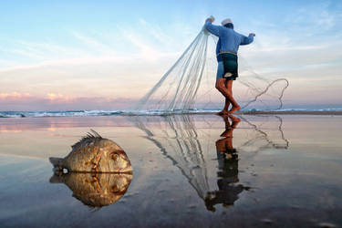 Caught In the Net by ahermin