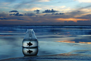 Ink Sea by ahermin