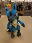 Lucario at the Library by NovaKaru