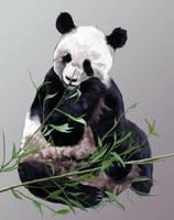 Panda by xLithium0509