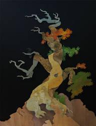 Whitebark Pine by WonderDookie