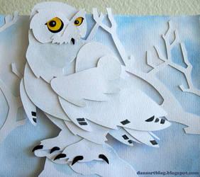 Snowy Snowy Owl by WonderDookie
