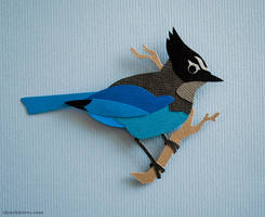 Steller's Jay Cut Out by WonderDookie