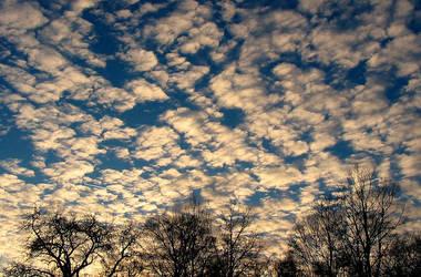 Sky So Warm. by LittleBas3rd