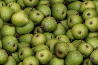 Pears by lylejk