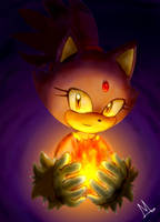 .Blaze the Cat. by HexaFruit