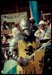 knights tournament 2 by emjot72