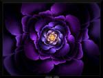 77G4-The Rose of Sleek by AmorinaAshton