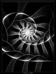 77J4-White Lined Spiral by AmorinaAshton