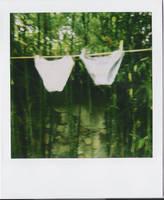 culottes. by moumine-polaroid