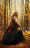 Black butterfly by woodland-lullaby