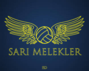SARI MELEKLER by shady06