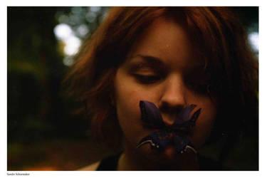 Waarom vlinders soms zwijgen by Talescaper
