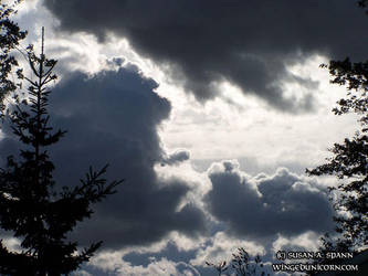 Winter Sky by crankybear