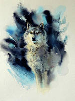 Loup by claratessier