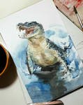crocodile study by claratessier