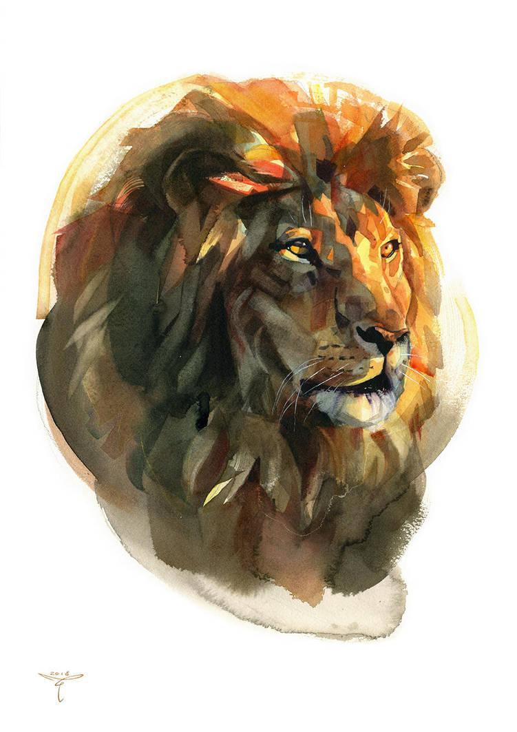 lion by claratessier
