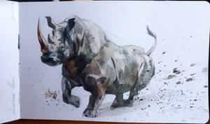 rhinoceros by claratessier