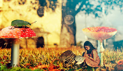 Photomerge - Mushroom Girl by WelshPixie