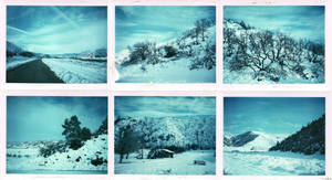 blue snow by bluecitrusart