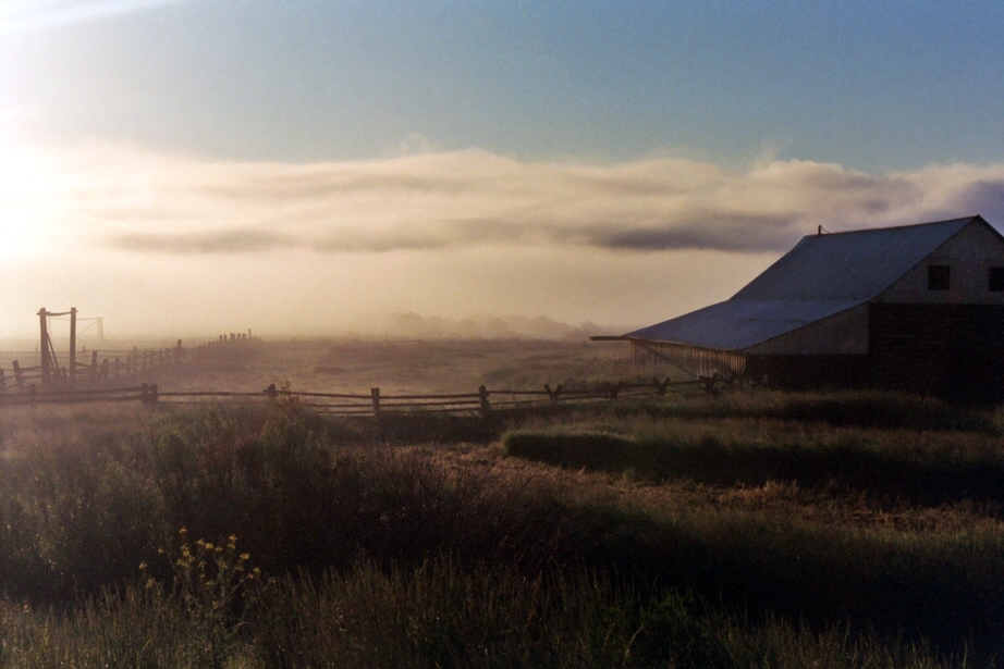 Misty pasture by Misfit0481