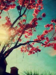 Springtime Sing by dan0swenson