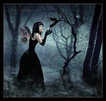 The Mystics Dream by EmberRoseArt