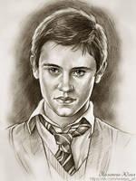 Seamus Finnigan. Harry Potter by Knesya27