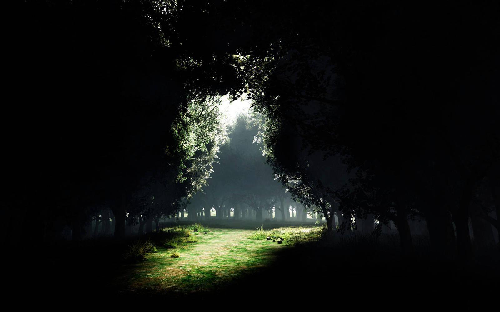 Dark green by FreeDreamsDesigns