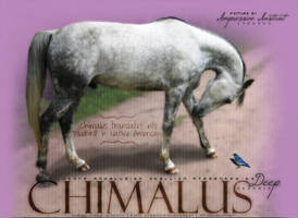 Chimalus by Impressive-Instant