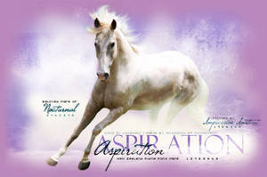 Aspiration by Impressive-Instant