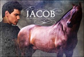 Jacob by Impressive-Instant
