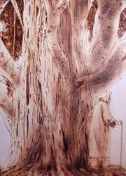 Old_branch_pyrogravure by NG02