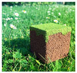 Realistic Minecraft Cube by BBLegend